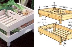 Конструкция ящика для хранения свеклы.