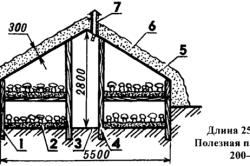 Схема шампиньонной грядки