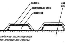 Схема устройства слоев шампиньонных грядок.