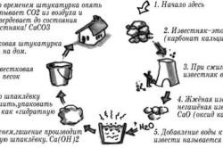Известковый цикл