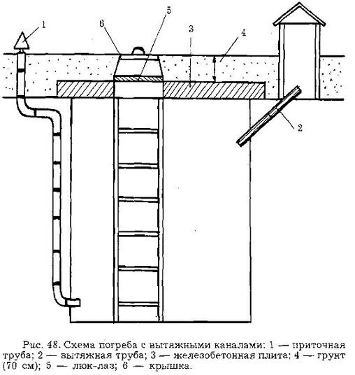 Схема погреба с вытяжными