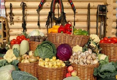 Урожай, собранный осенью, можно хранить на протяжении всей зимы. Однако без специальных знаний о температурном режиме хранения овощей они могут испортиться.