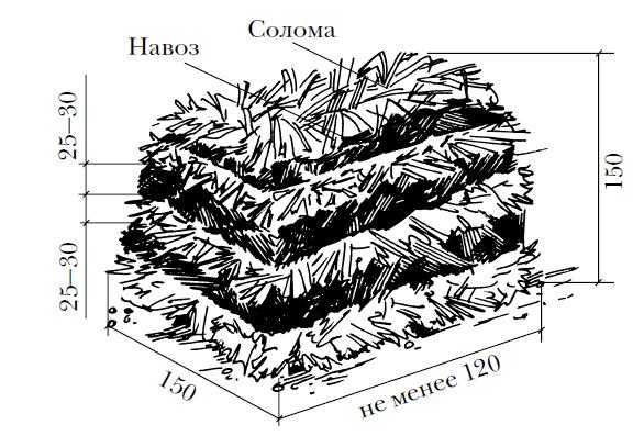 Состав компоста для шампиньонов.
