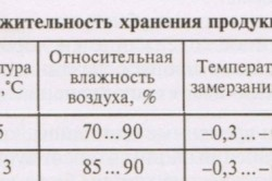Таблица условий хранения тыквы и кабачков.