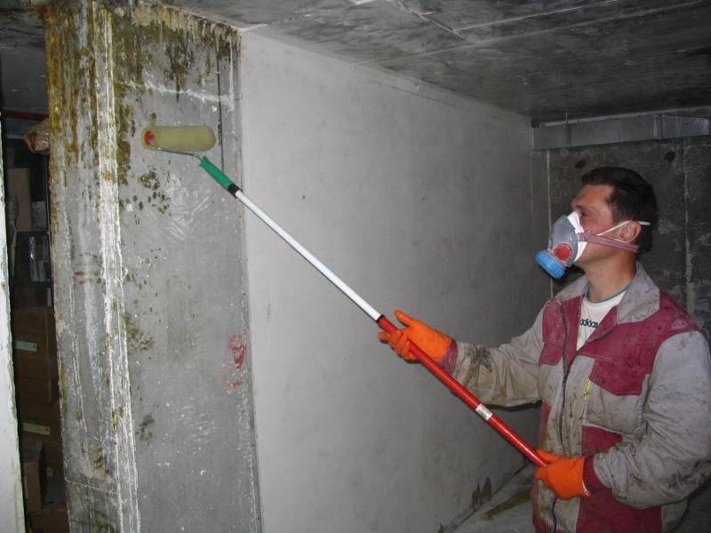 Обработка стен антиплесневой жидкостью
