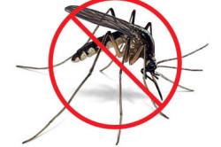 Борьба с комарами